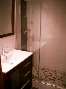 Shower screen with glass and stainless steel